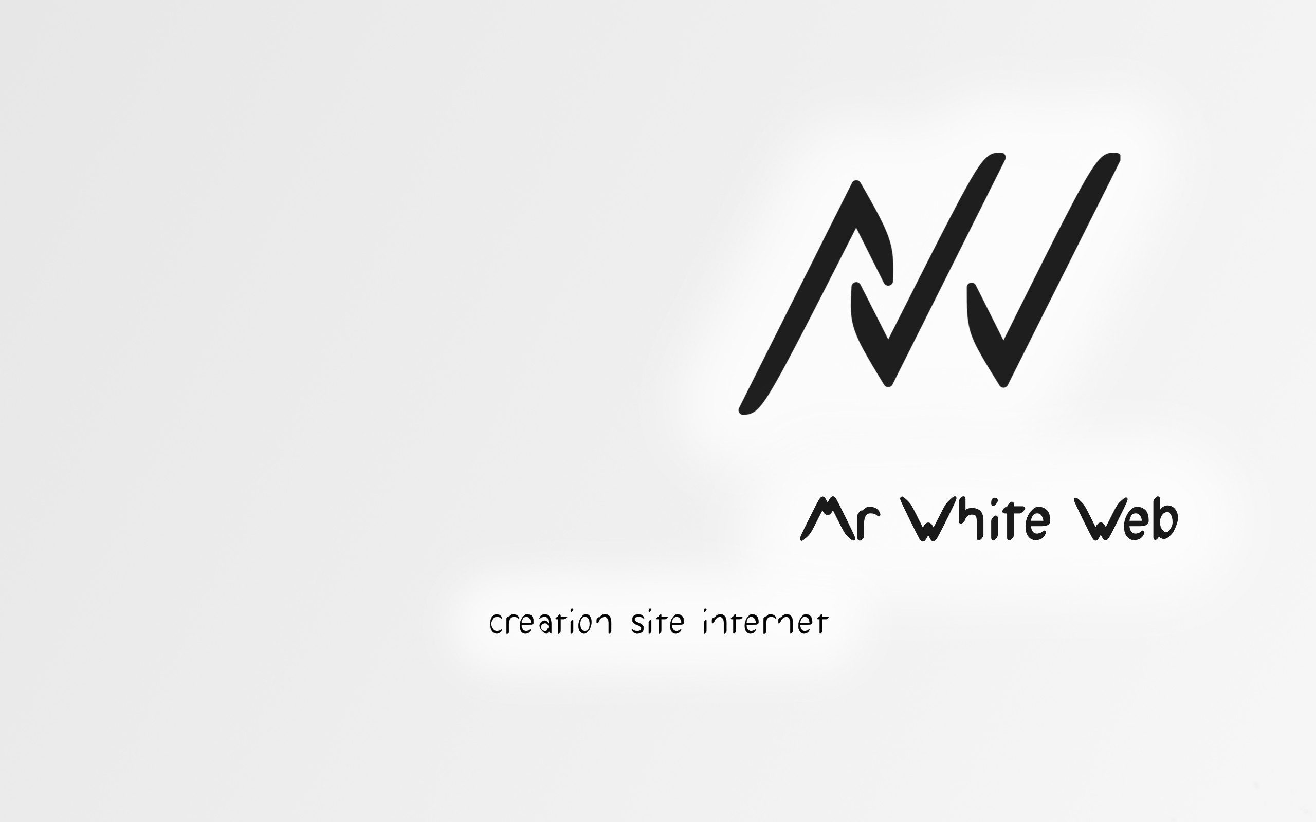 logo mr white web